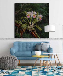 tranh hoa lan 12 247x296 - Tranh Hoa Lan - OHO0291