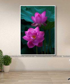tranh hoa sen 63 247x296 - Tranh Hoa Sen - OHO0226