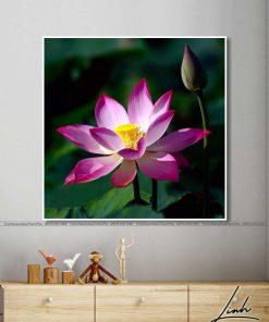 tranh hoa sen 74 247x296 - Tranh Hoa Sen - OHO0256
