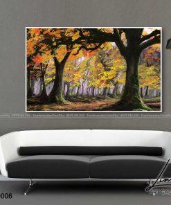 tranh phong canh 6 247x296 - Tranh Phong Cảnh - OPC0006